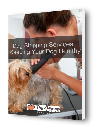 dog stripping services ebook cover 3d image